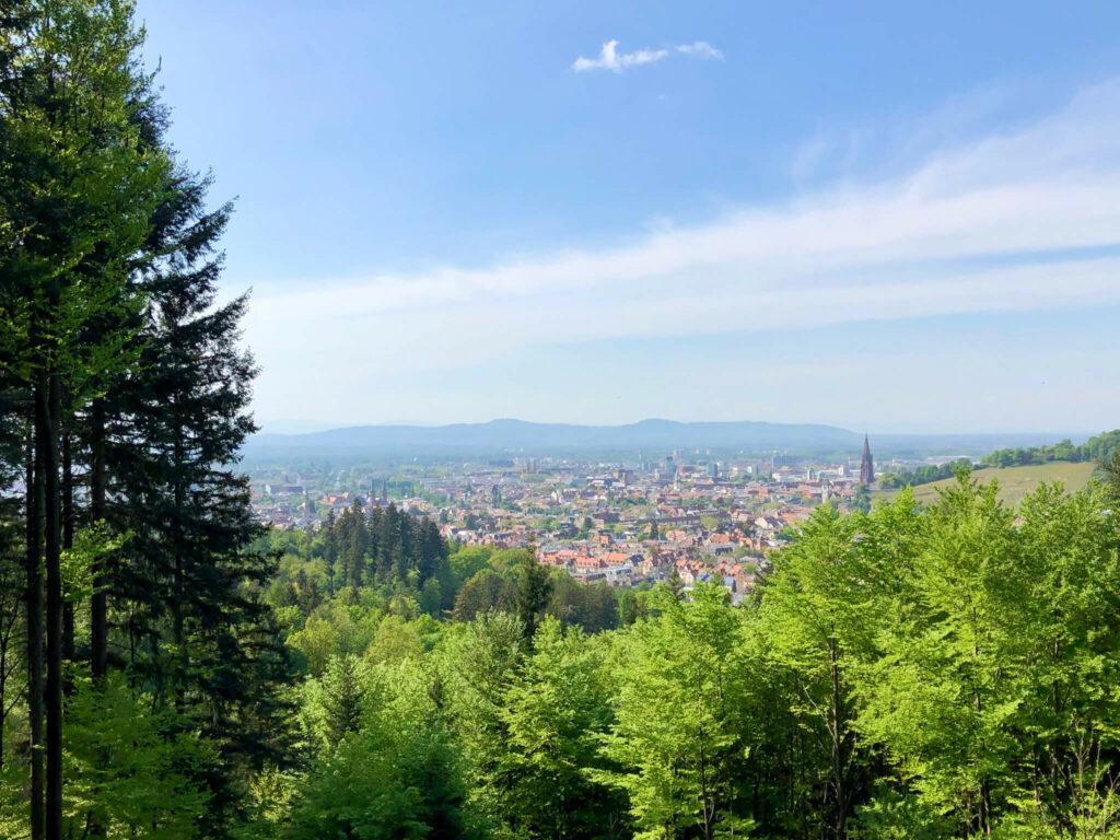 Auf dem Weg zum Kybfelsen: Blick auf Freiburg