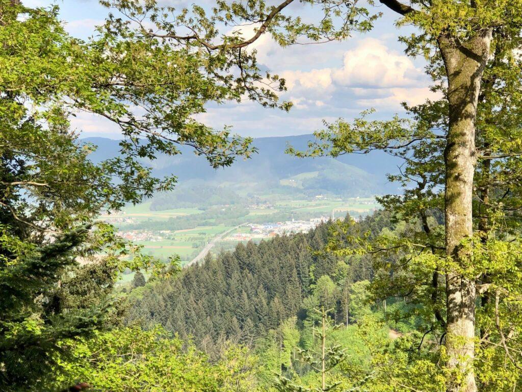 Aufstieg zum Kybfelse: Dreisamtal & Kirchzarten